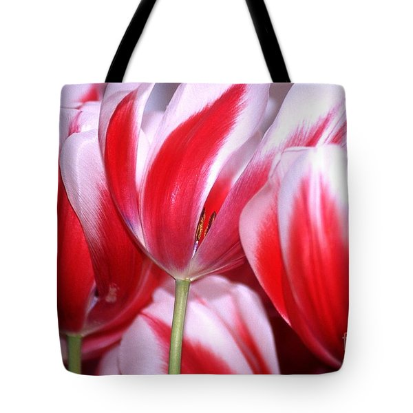 Merry Widow Tote Bag by Anne Gordon