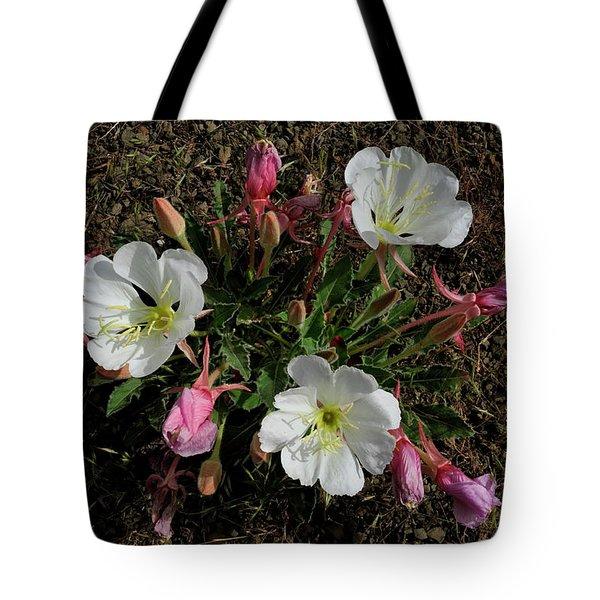 Mesa Blooms Tote Bag