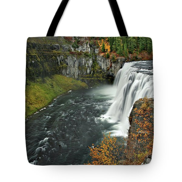 Tote Bag featuring the photograph Mesa Falls by Wesley Aston