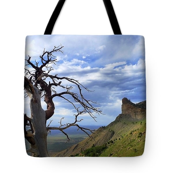 Mesa Verde Mood Tote Bag