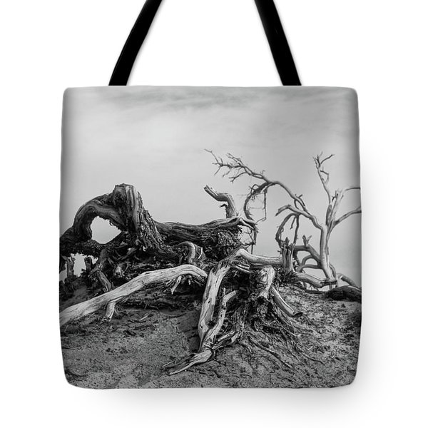 Mesquite Roots - Death Valley 2015 Tote Bag