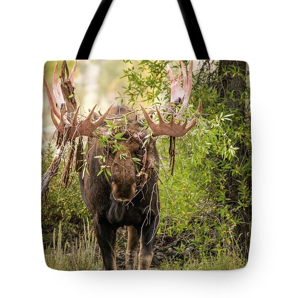 Tote Bag featuring the photograph Messy Moose by Mary Hone
