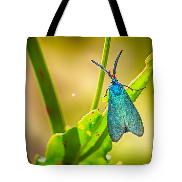 Metallic Forester Moth Tote Bag
