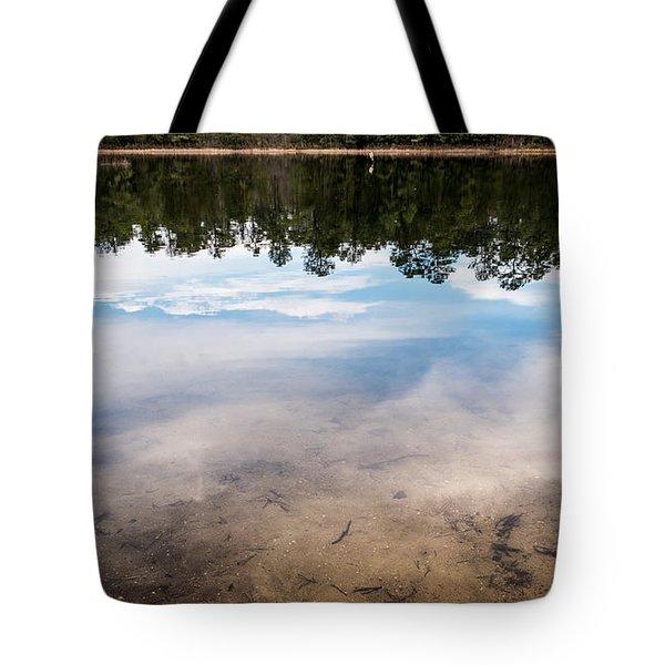 Metamorphosis Tote Bag by Glenn DiPaola