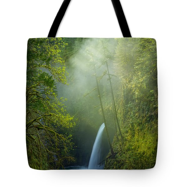 Tote Bag featuring the photograph Metlako Falls Dressed In Fog by Patricia Davidson