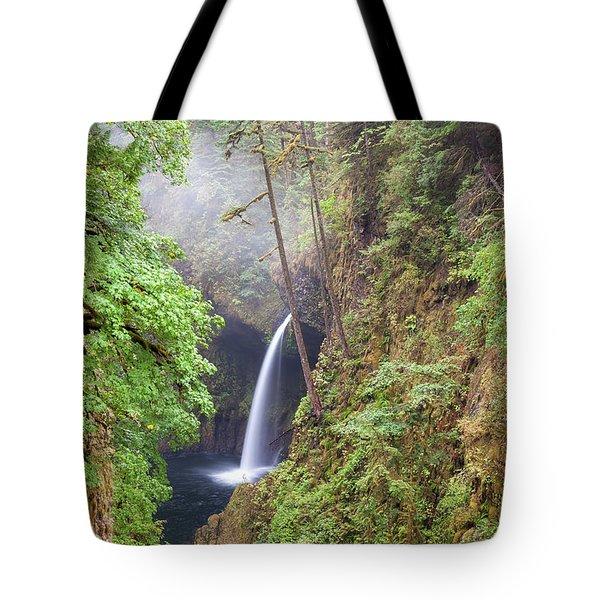 Metlako Falls In Columbia River Gorge Tote Bag
