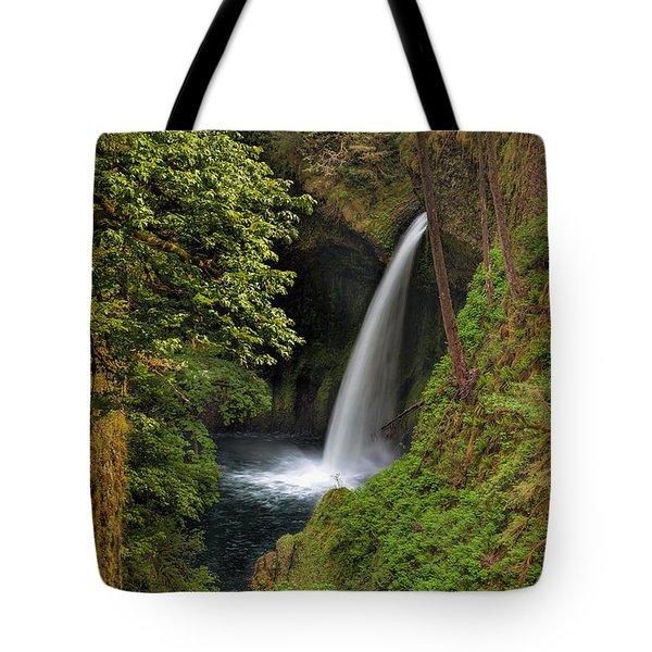 Metlako Falls In Spring Tote Bag by David Gn