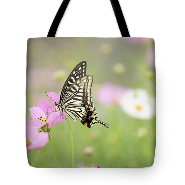 Mexican Aster With Butterfly Tote Bag
