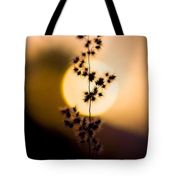 Mexican Desert Sunset Tote Bag