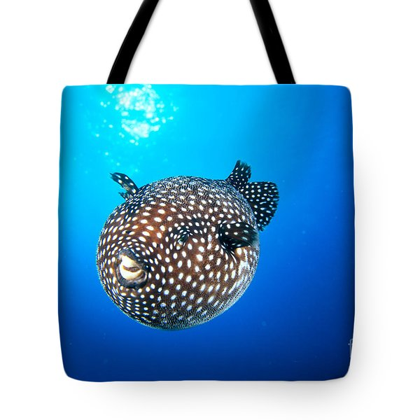 Mexico Guineafowl Puffer Tote Bag by Dave Fleetham - Printscapes