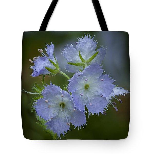 Miami Mist Bloom Tote Bag