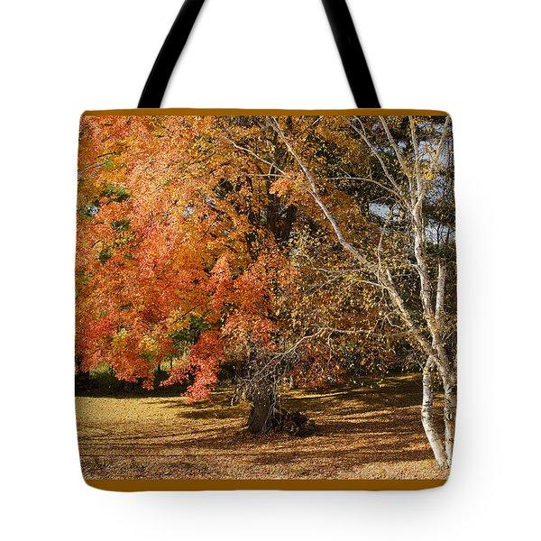 Michigan Autumn 1 Tote Bag