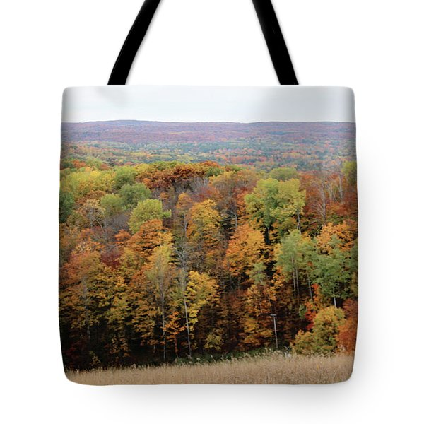 Michigan Autumn Tote Bag