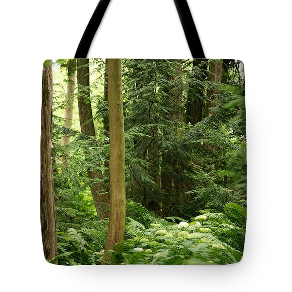 Tote Bag featuring the photograph Michigan Woods 3 by Linda Shafer
