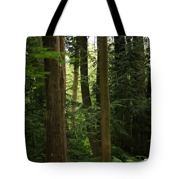 Tote Bag featuring the photograph Michigan Woods by Linda Shafer