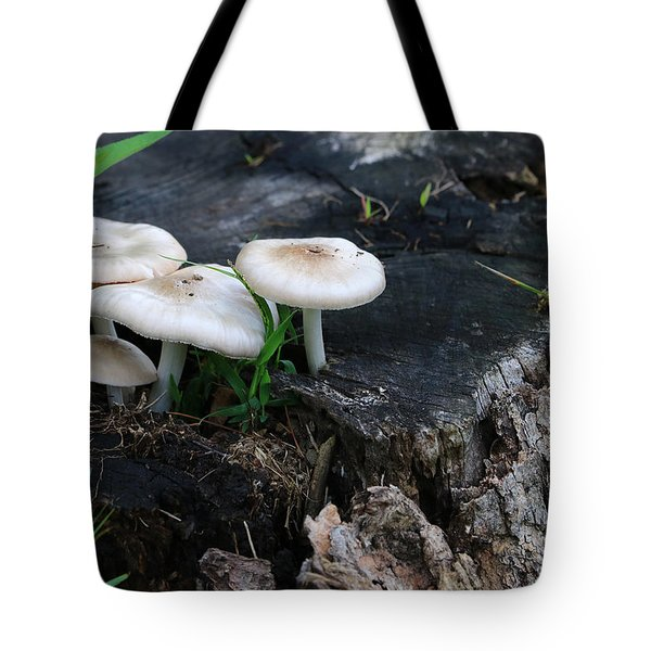 Mid Summers Fungi Tote Bag