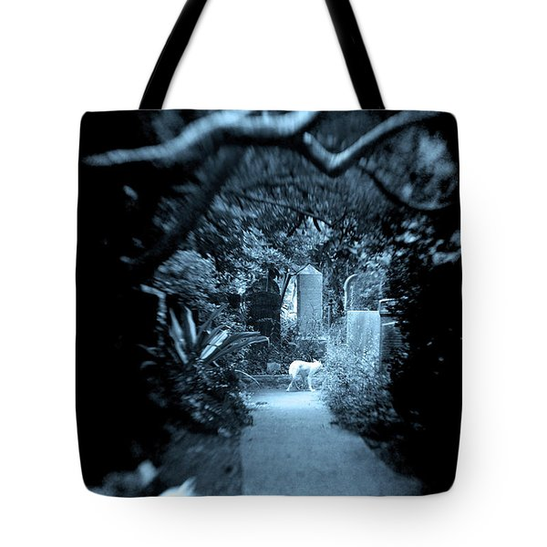 Tote Bag featuring the photograph Midnight In The Garden O by Jennifer Wright
