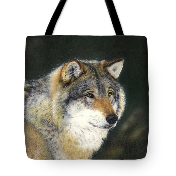 Midwinter Sunrise Tote Bag