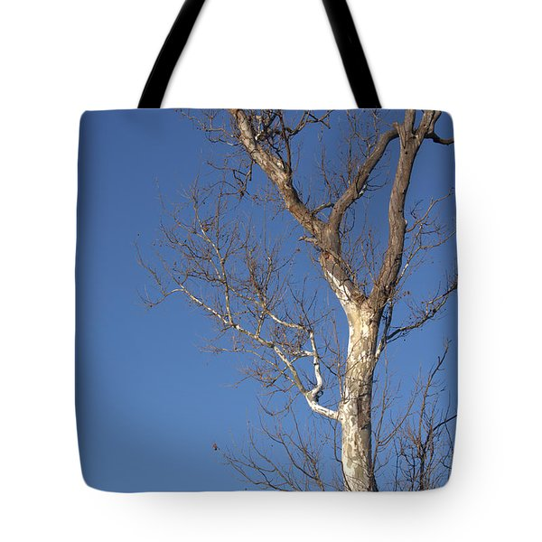 Mighty Tree Tote Bag