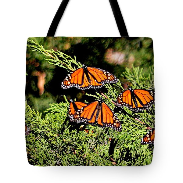 Tote Bag featuring the photograph Migrating Monarchs by AJ Schibig