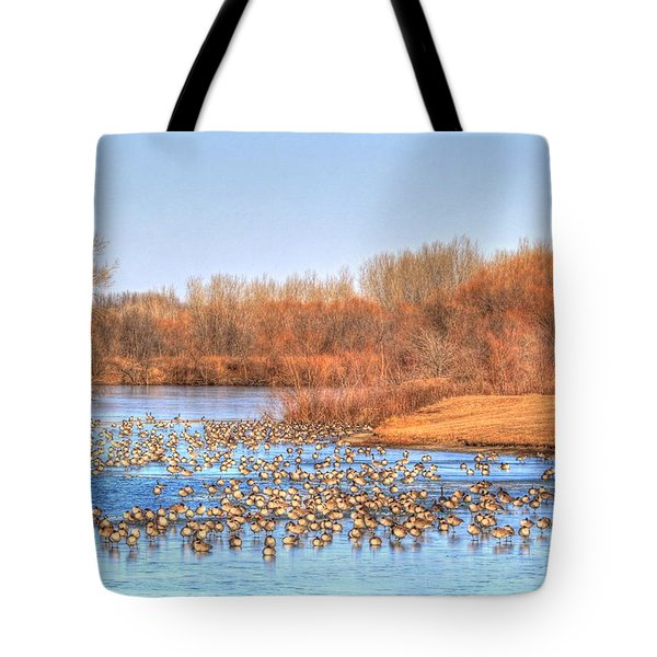 Migration Break On Ice Tote Bag