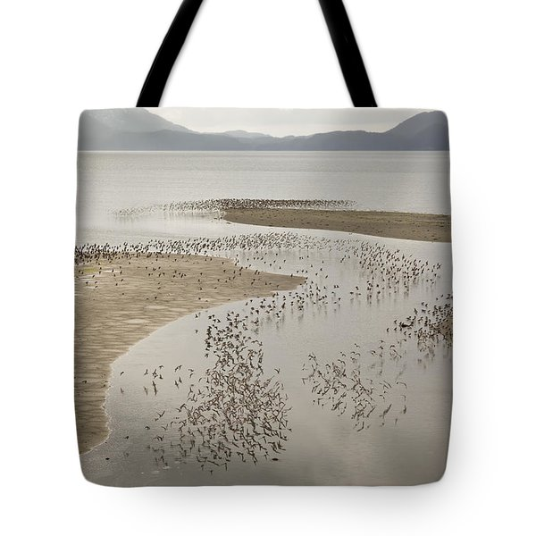 Migration Patterns Two Tote Bag