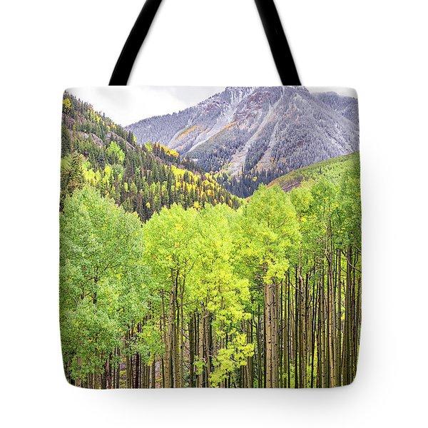 Miguel County Colorado Tote Bag
