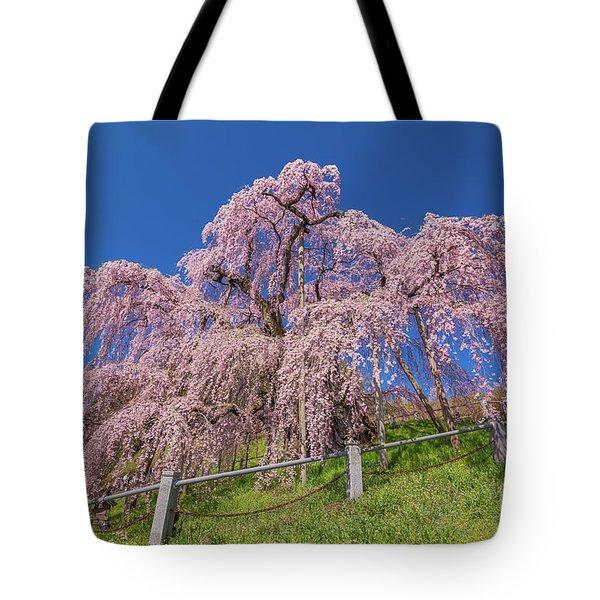 Tote Bag featuring the photograph Miharu Takizakura Weeping Cherry0565 by Tatsuya Atarashi
