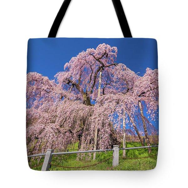 Tote Bag featuring the photograph Miharu Takizakura Weeping Cherry31 by Tatsuya Atarashi
