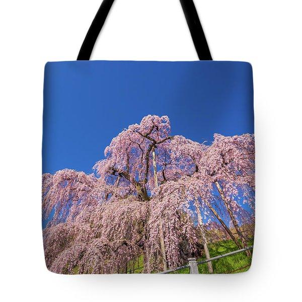 Tote Bag featuring the photograph Miharu Takizakura Weeping Cherry32 by Tatsuya Atarashi