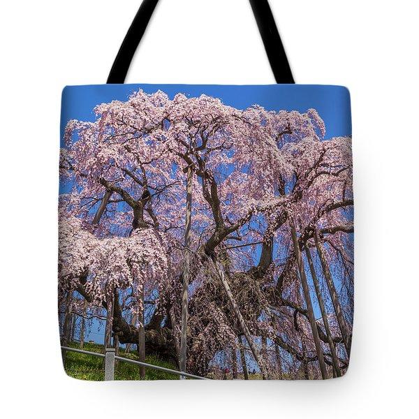 Tote Bag featuring the photograph Miharu Takizakura Weeping Cherry55 by Tatsuya Atarashi
