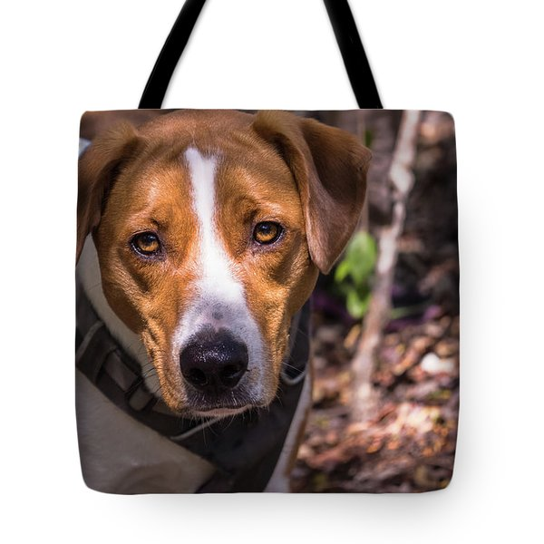 Mikey Tote Bag