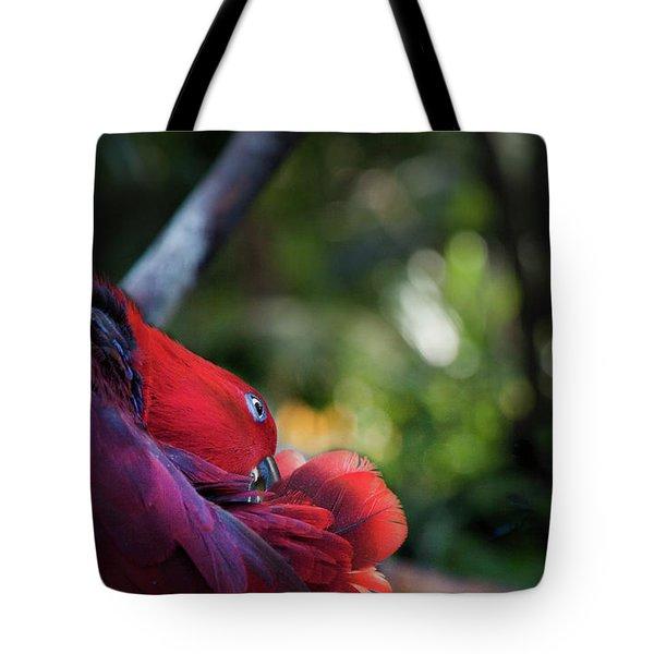 Tote Bag featuring the photograph Miksang 4 Parrot by Theresa Tahara