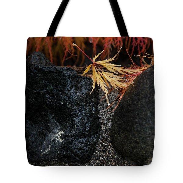 Tote Bag featuring the photograph Miksang 5 Autumn by Theresa Tahara