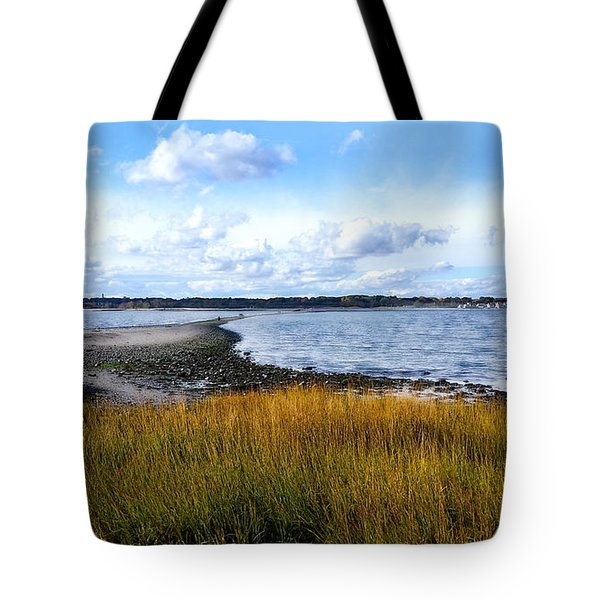 Tote Bag featuring the photograph Milford Island by Raymond Earley