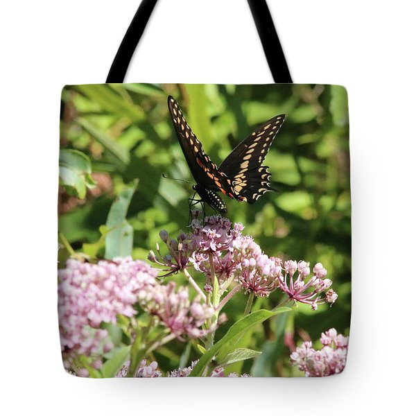 Male American Swallowtail Papilio Polyxenes Tote Bag