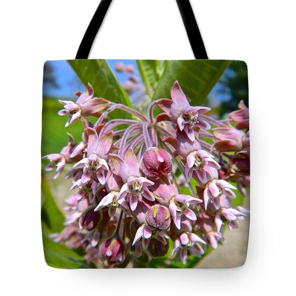 Milkweed Beauty Tote Bag