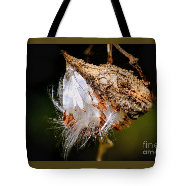 Tote Bag featuring the photograph Milkweed by Brenda Bostic