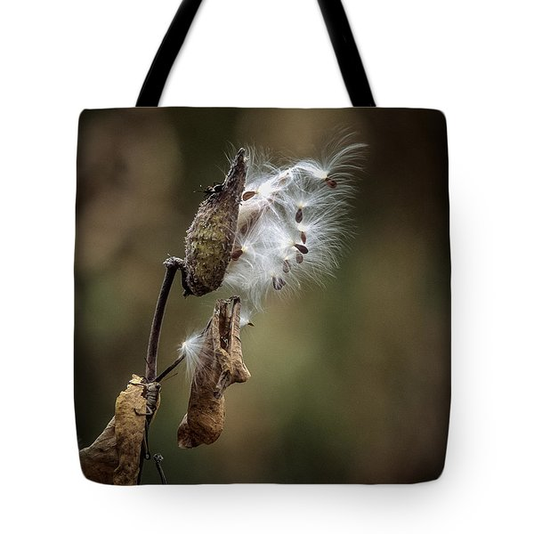 Milkweed Plant Dried And Blowing In The Wind Tote Bag by John Brink