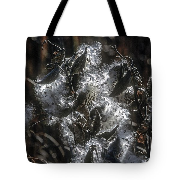 Milkweed Plant Dried Seeds  Tote Bag by John Brink