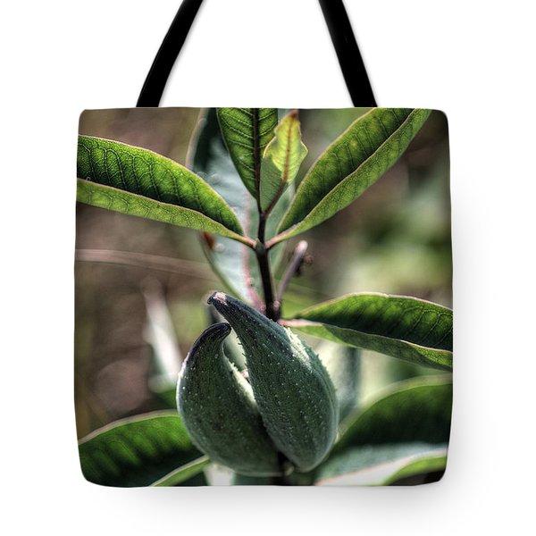 Milkweed Pod Tote Bag