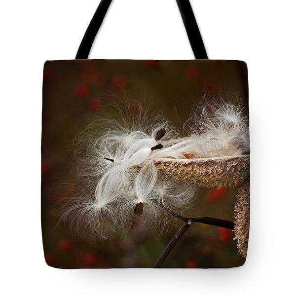 Milkweed Pods Tote Bag by Elsa Marie Santoro