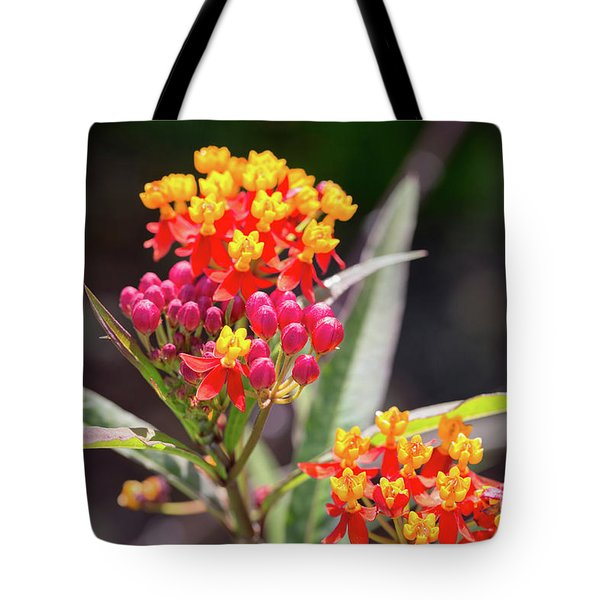 Milkweed Silky Deep Red Tote Bag by Louise Heusinkveld