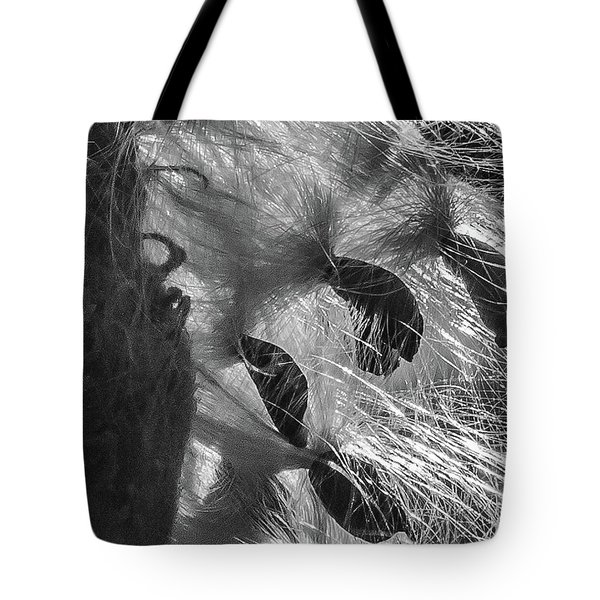 Milkweed Sunburst In Black And White Tote Bag