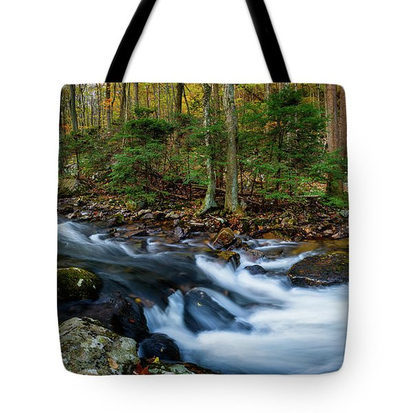 Mill Creek In Fall #2 Tote Bag
