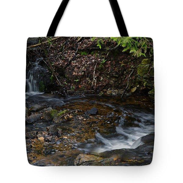 Mill Creek Tote Bag