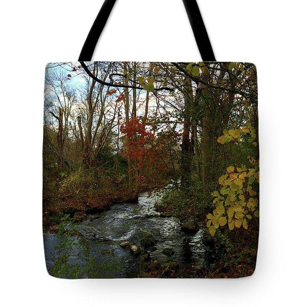 Mill Creek, Sandwich Massachusetts Tote Bag