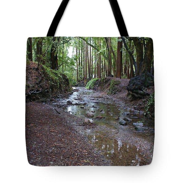 Miller Grove Tote Bag by Ben Upham III