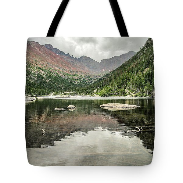 Mill's Lake View Tote Bag