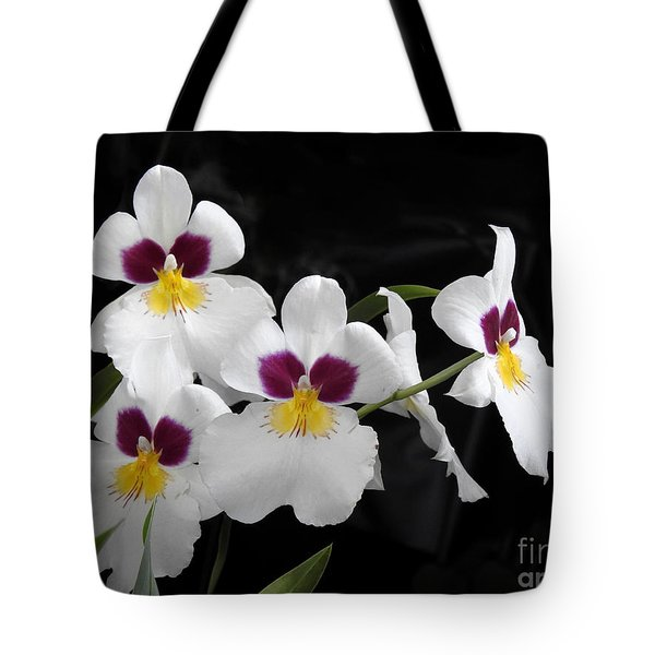 Miltonia Hybrid Orchid Tote Bag by Scott Cameron